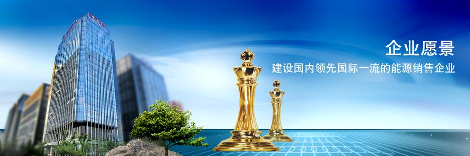 建设东濮、普光、内蒙三大油气生产基地打造油田发展百年基业